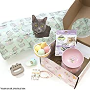 Cat Kit by Pusheen Box - Officially Licensed Pusheen Subscription Box made for your Pet Cat