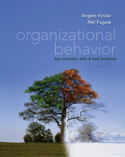 Organizational Behavior:  Key Co...