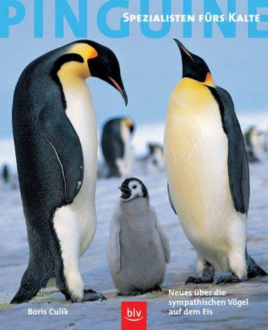 Pinguine - Spezialisten fürs Kalte: Neues über die sympathischen Vögel auf dem Eis