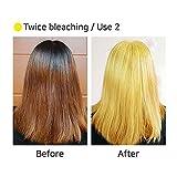MASIL Dual Tint Self Hair Bleach Powder 4.2oz
