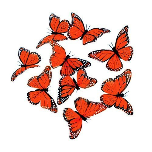 World Buyers MONARCH 9 BUTTERFLY GARLAND-Feather Butterfly Garland- Wedding-Artificial Butterflies -String of Butterflies Measures 4.5x78 L