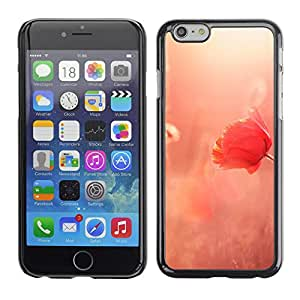 """Hot Style Cell Phone PC Hard Case Cover // M00102844 flowers photos summer poppy light // Apple iPhone 6 4.7"""""""