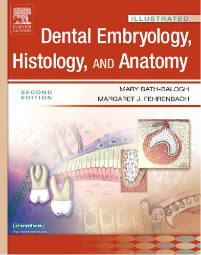 Illustrated Dental Embryology, Histology, and Anatomy (Illustrated Colour Text)
