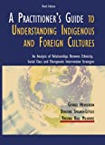 A Practitioner's Guide to Understanding Indigenous and Foreign Cultures : An Analysis of Relationships Between Ethnicity, Social Class and Therapeutic Intervention Strategies, Henderson, George and Spigner-Littles, Dorscine, 0398076545