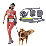 Sundlight Release Buckle Hands Free Dog Leash Waist Pack, Sports waist leash for Running/Jogging/Walking, with Detachable Pouch and Elastic Leash, Gray