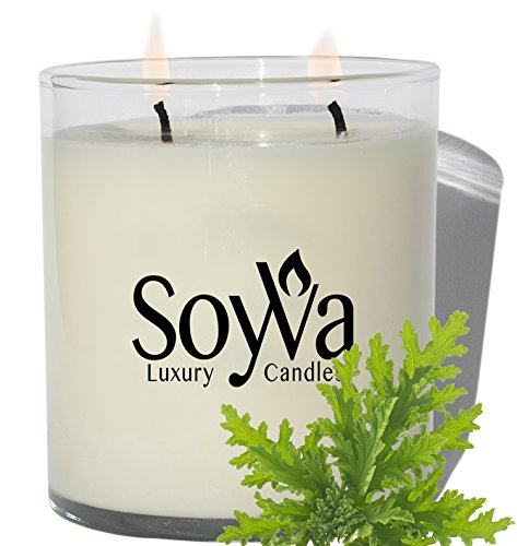 Double Candle (Citronella Candle by SoyVa | Freshly Scented Natural Soy Wax Candles | Luxury Double Wick Design | Hand Made in the USA, 9oz.)