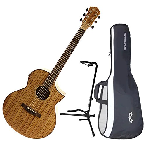 Ibanez Exotic Wood AEW40ZW-NT Acoustic-Electric Guitar w/ Gig Bag and Stand