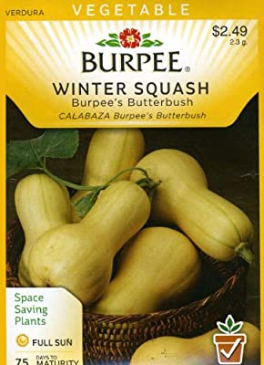Burpee 66829 Squash, Winter Burpee's Butterbush Seed Packet