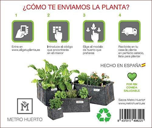 Experiencia Huerto Urbano SACO Cubo + Plantas ECO: Amazon.es: Jardín
