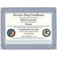 Official Certified Service Dog Certificate with Leather Presentation Folder   Fully Customized with Handler/Dog Information   Includes Free Registration at U S Service Dogs Registry
