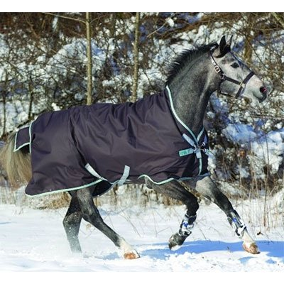 Horseware Amigo Bravo 12 Wug Medium 250g 78 by Horseware Ireland