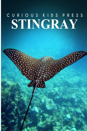 Stingray - Curious Kids Press: Kids book about animals and wildlife, Children's books 4-6 por CURIOUS KIDS PRESS