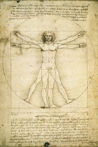 HUGE LAMINATED / ENCAPSULATED Anatomy Of Man Leonardo Da Vin