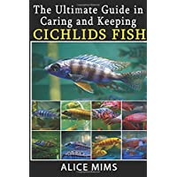 The Ultimate Guide in Caring and Keeping Cichlids Fish