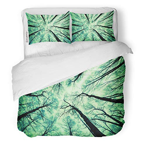 - Semtomn Decor Duvet Cover Set King Size Green Cedar Looking Up at The Sky Aspen Bark City 3 Piece Brushed Microfiber Fabric Print Bedding Set Cover