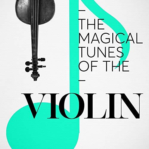 The Four Seasons, Violin Concerto No. 2 in G Minor, RV 315