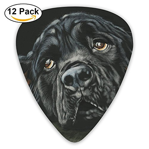 12-pack Fashion Classic Electric Guitar Picks Plectrums Black Rottweiler Breed Dog Instrument Standard Bass Guitarist
