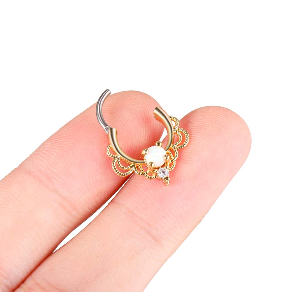 Xpircn Stainless Steel 16G Septum Piercing Jewelry Nose Hoop Clicker Rings 8mm A02B0906