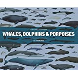 Whales, Dolphins and Porpoises: A Natural History and Species Guide