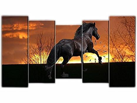 Orologi Da Parete In Tela : Tlg tela foto orologio da parete cavallo stallone immagine su