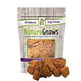 Nature Gnaws Smoked Salmon Jerky Bites (8 oz) – 100% Natural Grain Free Dog Treats Review