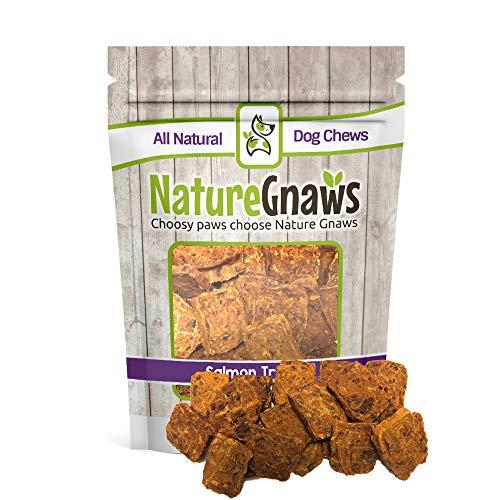 (Nature Gnaws Smoked Salmon Jerky Bites (8 oz) - 100% Natural Grain Free Dog Treats)