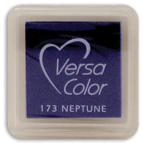 Tsukineko Small-Size VersaColor Ultimate Pigment Inkpad, Neptune (Versacolor Cubes)