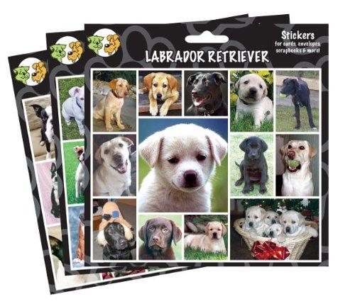 (Arf Art Stickers, Breed: Siberian Husky)