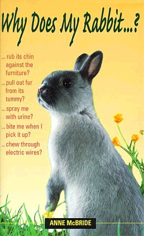 Why Does My Rabbit . . . ? (Why Does My . . . ? series) by Souvenir Press
