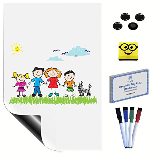 Magnetic Dry Erase Whiteboard   Dry Erase Organiser Memo Board With Magnetic Eraser  4 Magnetic Markers  4 Magnetic Buttons  100 Video Recipes