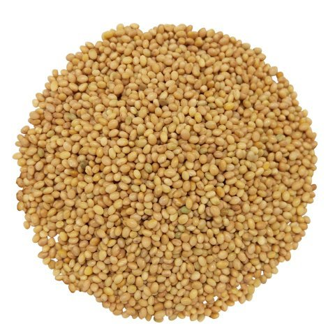 Food to Live Certified Organic Clover Seeds (Sprouting, Non-GMO, Kosher, Bulk) (50 Pounds) by Food to Live (Image #6)