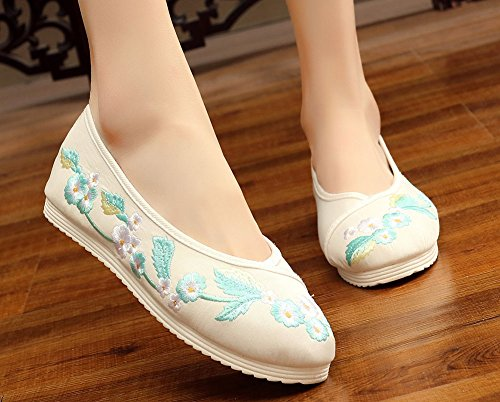 AvaCostume Womens Floral Embroidery Satin Dance Shoes White P4og5GM