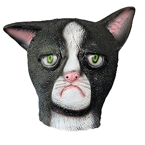 XIAO  (Cat Face Costumes)