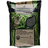 Our Pets Switchgrass Natural Clumping Biodegradable Cat Litter with Biochar, 10 pound