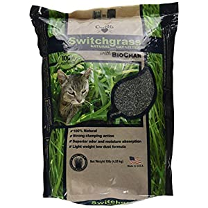 OurPets Switchgrass Natural Clumping Biodegradable Cat Litter with Biochar, 10 pound 112