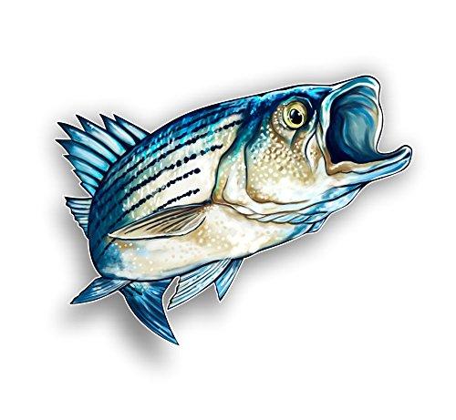- Vinyl Junkie Graphics Striped Bass Fish Sticker/Decal