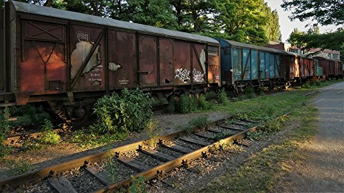 Home Comforts Peel-n-Stick Poster of Train Wagons Siding Leave Railway Boxcar Poster 24x16 Adhesive Sticker Poster Print ()