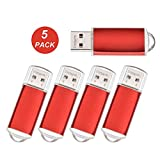 Datarm USB Memory Stick 64MB Bulk Pack of 5, Small Capacity USB Drive for Business Promotion, Red