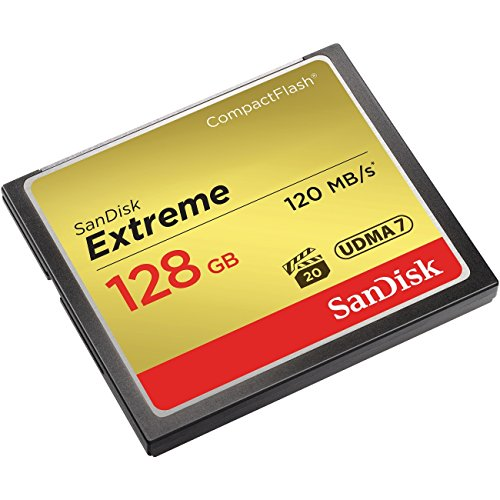 (Extreme CompactFlash 128GB Electronics Computer Networking)