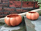 Terracotta Clay Set of 2 Different Size Pumpkin Shaped Planters or Flowerpots