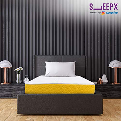 SleepX Presented by Sleepwell Apt High Resilience (HR) Foam Mattress - (72x36x6 Inches) with Free Pillow