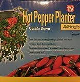 Upside Down Hanging Hot Pepper Planter!