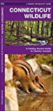 Connecticut Wildlife: A Folding Pocket Guide to Familiar Species (A Pocket Naturalist Guide)