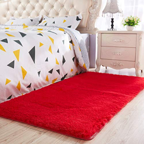 (Plush Shag Rug Thicken Soft Washable Fuzzy Fur Carpet Non-Slip Fuzzy Floor Mat for Living Room Blanket)