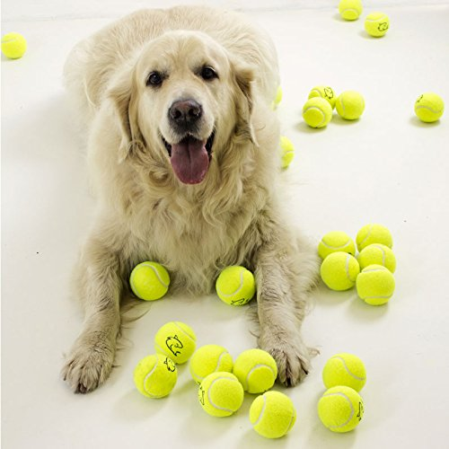 Palline da tennis gialle, ideali per cani di razza golden retriever, 5 pezzi Shark Tennis Balls