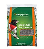 buy Valley Splendor Black Oil Sunflower Seeds, 2 lbs now, new 2018-2017 bestseller, review and Photo, best price $8.25