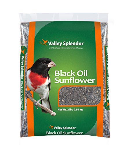 Valley Splendor Black Oil Sunflower Seeds, 2 lbs ()