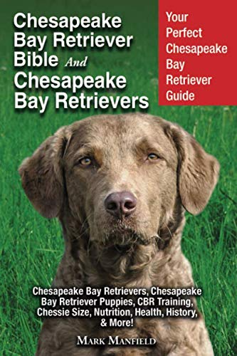 Chesapeake Bay Retriever Bible and Chesapeake Bay Retrievers: Your Perfect Chesapeake Bay Retriever Guide Chesapeake Bay Retrievers, Chesapeake Bay ... Size, Nutrition, Health, History, & More!