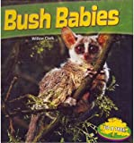 Bush Babies, Willow Clark, 1448861888