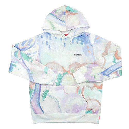 SUPREME シュプリーム 18SS Landscape Hooded Sweatshirt パーカー マルチ S 並行輸入品